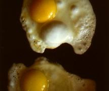 eggs_001