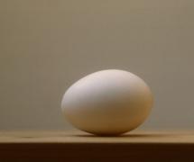 eggs_0014