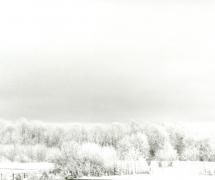 landscapes-0014