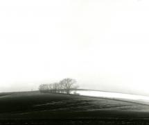 landscapes-004
