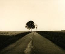 landscapes-005